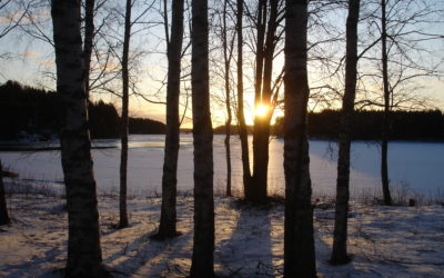 Fond of Finland
